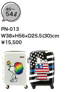 PN-013_spec