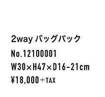 12100001_spec