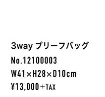 12100003_spec