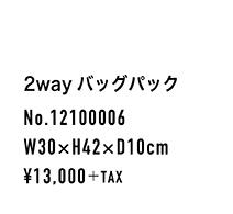 12100006_spec