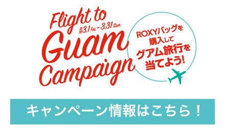 ROXY_to_campaign