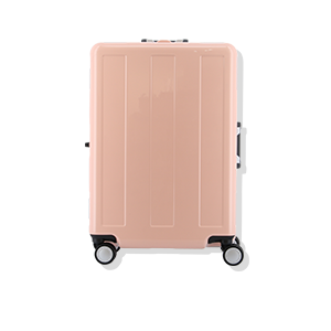 Advance Booon<br>CARRY CASE