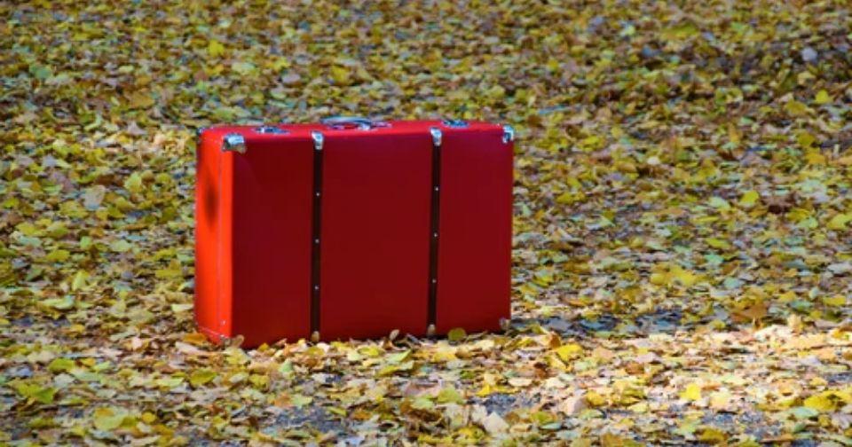 キャラクター入りのスーツケースをご紹介!ムーミンやサンリオキャラが登場!